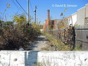 Homestead Lane (Formerly Vonderhorst Lane), Baltimore, Maryland